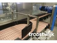 10. slat conveyor system